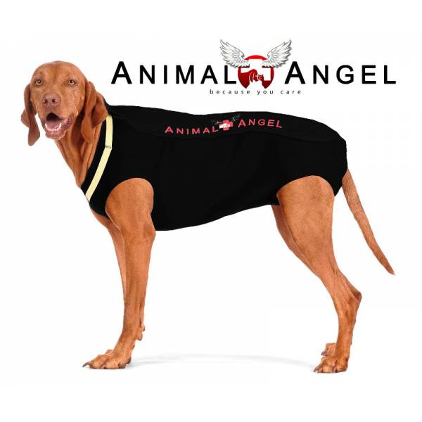 Animal Angel Hundebody XS 40cm